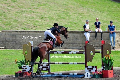 Equestrian NRR_5395 PE