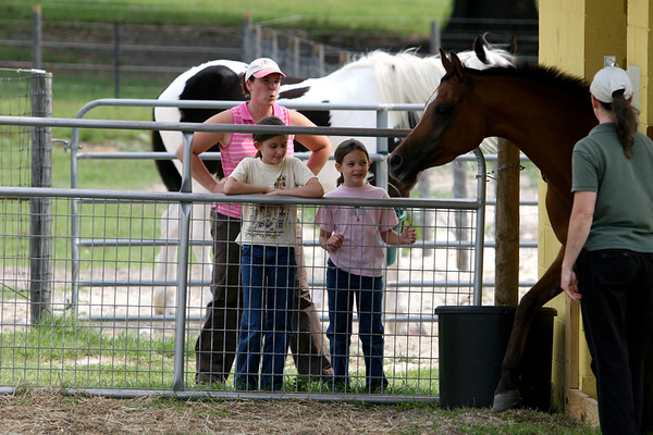 6.6.2007 Donavan and the Girls Riding Lesson