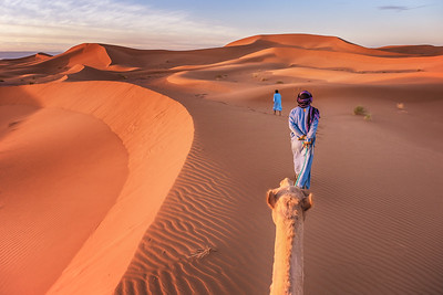 Traditional Transportation in the Sahara Desert