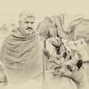 Portrait of a Camel Trader
