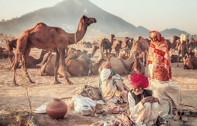 Camel Traders at the Pushkar Camel Fair in Rajasthan, India.