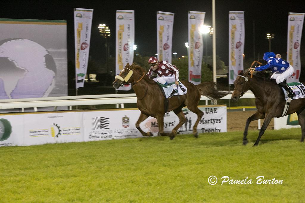 Kalino wins for Qatar