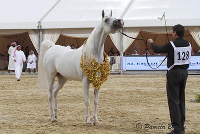 Badawieh AA Gold Sr. Mare