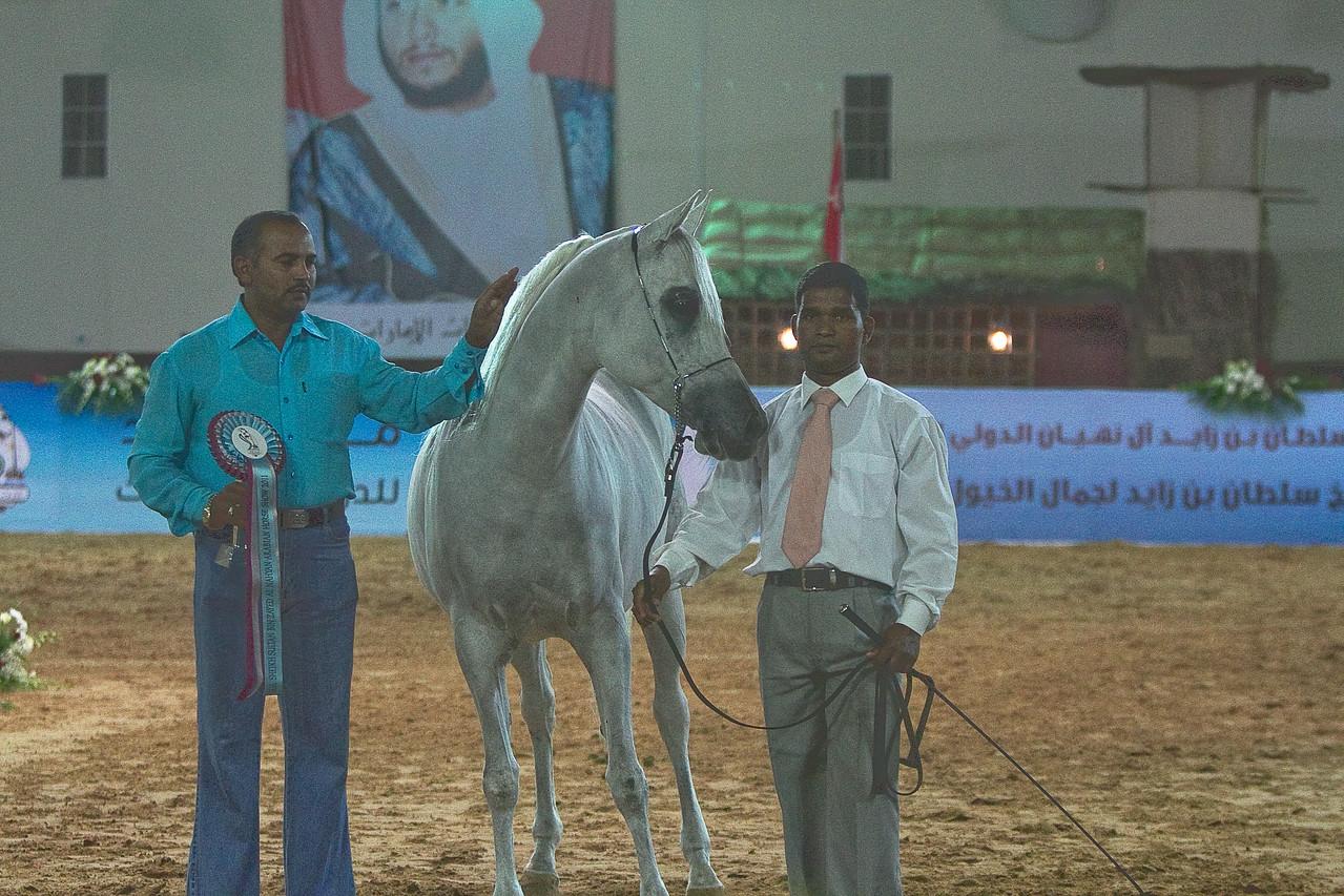 #66 Falha Al Shaqab5