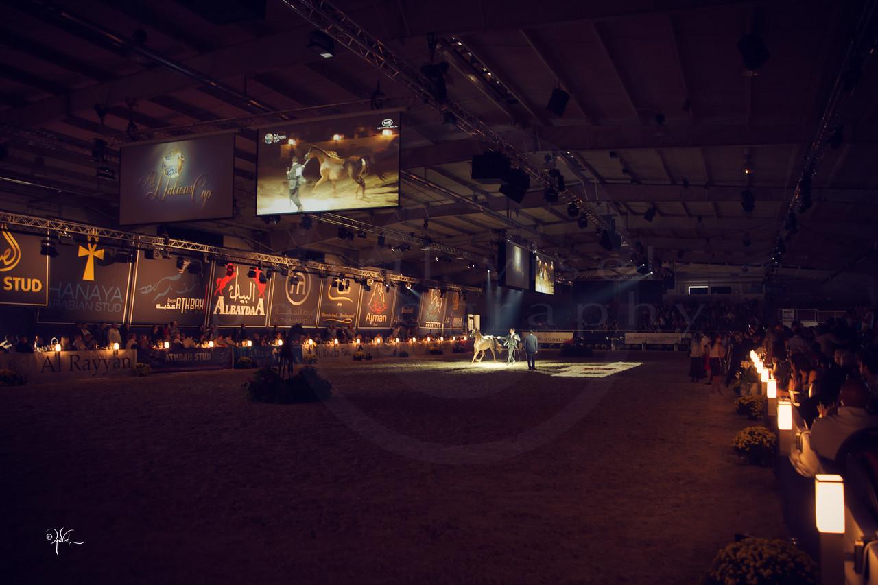 Aachen HTY Gala_9-16_226