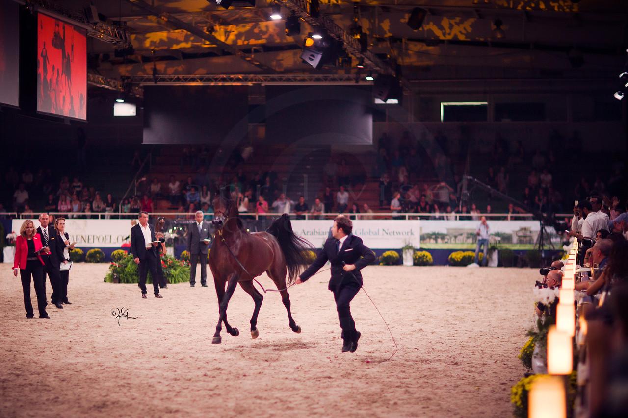Aachen HTY Gala_9-16_229