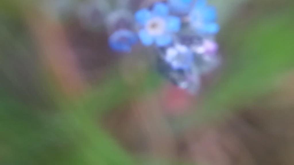 2017-05-07T08:22:49