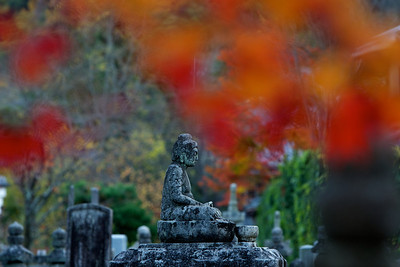 Buddha Stone Statue at Adashino Nenbutsu-ji Temple  Arashiyama/Kyoto Graveyard in Autumn with Maple Foliage