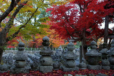 Stone Lanterns at Adashino Nenbutsu-ji Temple in Arashiyama/Kyoto  Rows of Statues with Maple Foliage on a Graveyard