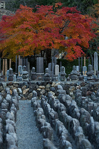 Rows of Stone Statues at Adashino Nenbutsu-ji Temple  Cementary in Arashiyama, Kyoto, with Autumn Foliage