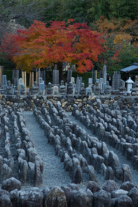 Countless Stone Statues at Adashino Nenbutsu-ji Temple  Graveyard with Maple Trees in Autumn