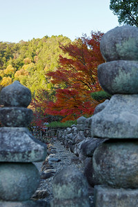 Stone Lanterns at Adashino Nenbutsu-ji Temple  With Yellow and Red Momiji Foliage