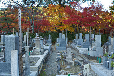 Cemetery at Adashino Nenbutsu-ji Temple in Arashiyama/Kyoto  In Autumn with red and yellow Maple Foliage