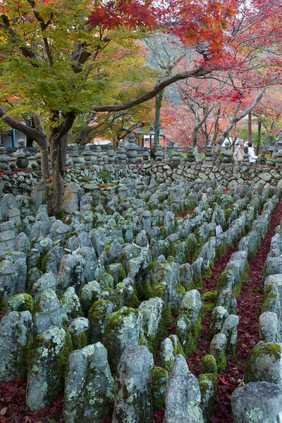 Countless Stone Statues at Adashino Nenbutsu-ji Temple Graveyard  Moss-covered with Autumn Foliage