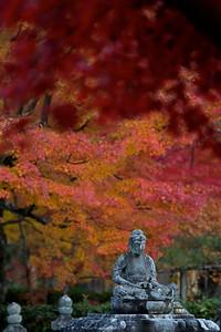 Buddha Stone Statue at Adashino Nenbutsu-ji