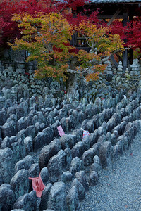 Countless Stone Statues at Adashino Nenbutsu-ji Temple  Arashiyama Area in Kyoto with Autumn Foliage