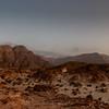 Desert Awakens