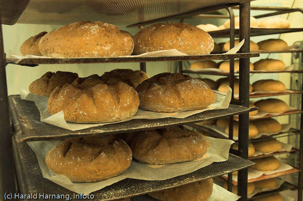 Bakeri, Ballangen, Myklevold.