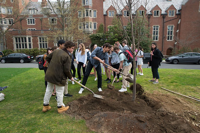 Taft EcoMons plant trees for Arbor Day