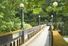 Arboretum Bridge 15