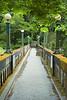 Arboretum Bridge 14