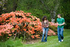 Arboretum Azalea Way 54