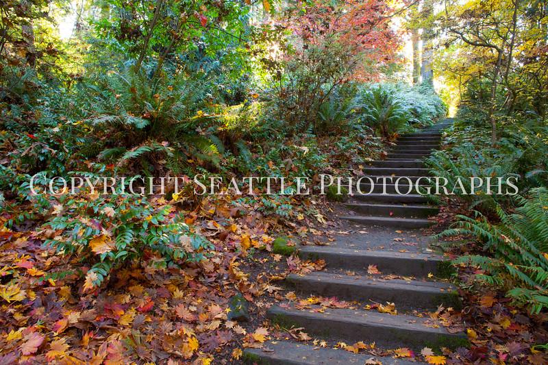 Arboretum Autumn 126