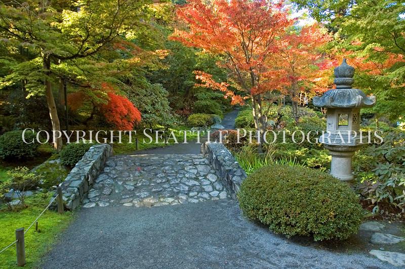 Japanese Garden Path 7