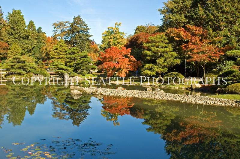 Japanese Garden Lake 12