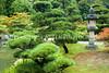 Japanese Garden Lantern 16