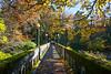Arboretum Autumn 120