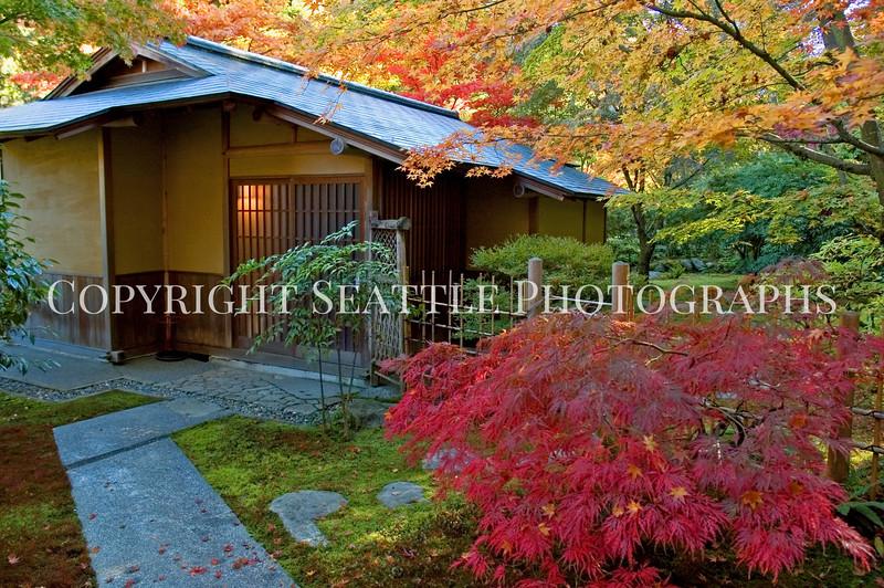 Japanese Garden Tea House 3
