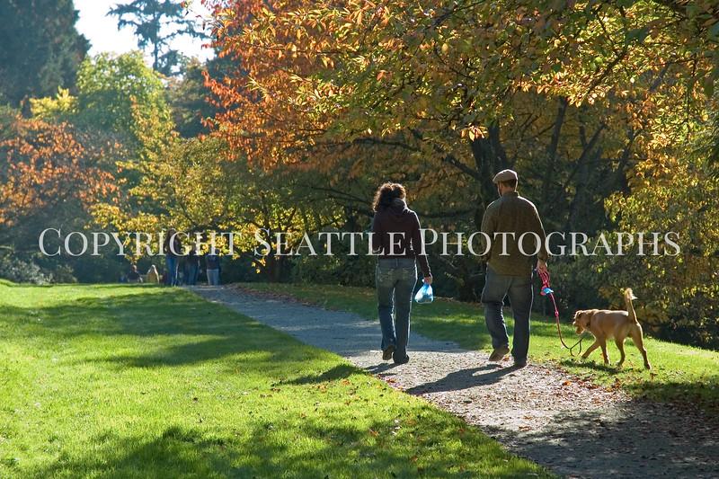 Arboretum Autumn 42
