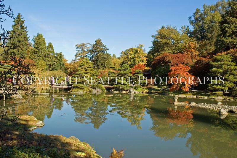 Japanese Garden Lake 9