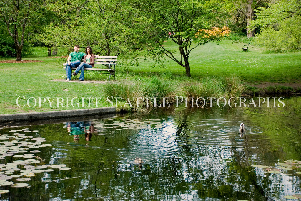 Arboretum Pond 2