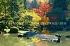 Japanese Garden Lake 14