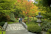 Japanese Garden Path 8