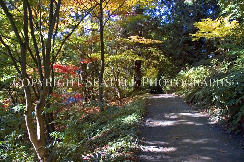 Arboretum Autumn 103