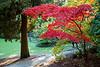 Arboretum Autumn 111