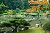 Japanese Garden Lake 37