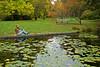 Arboretum Pond 50
