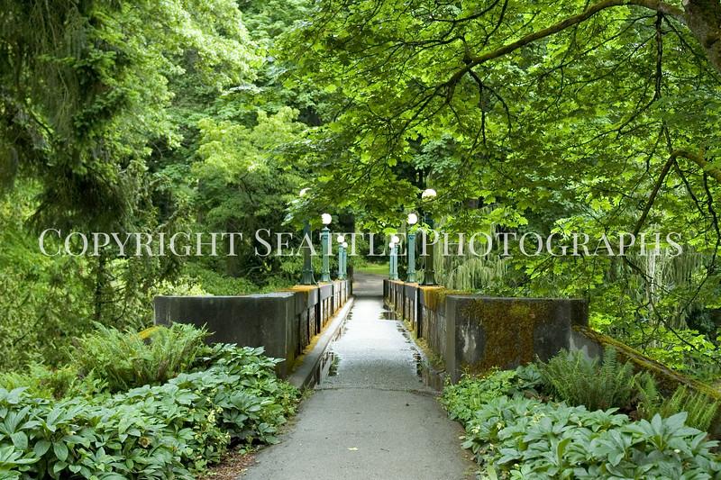 Arboretum Bridge 11