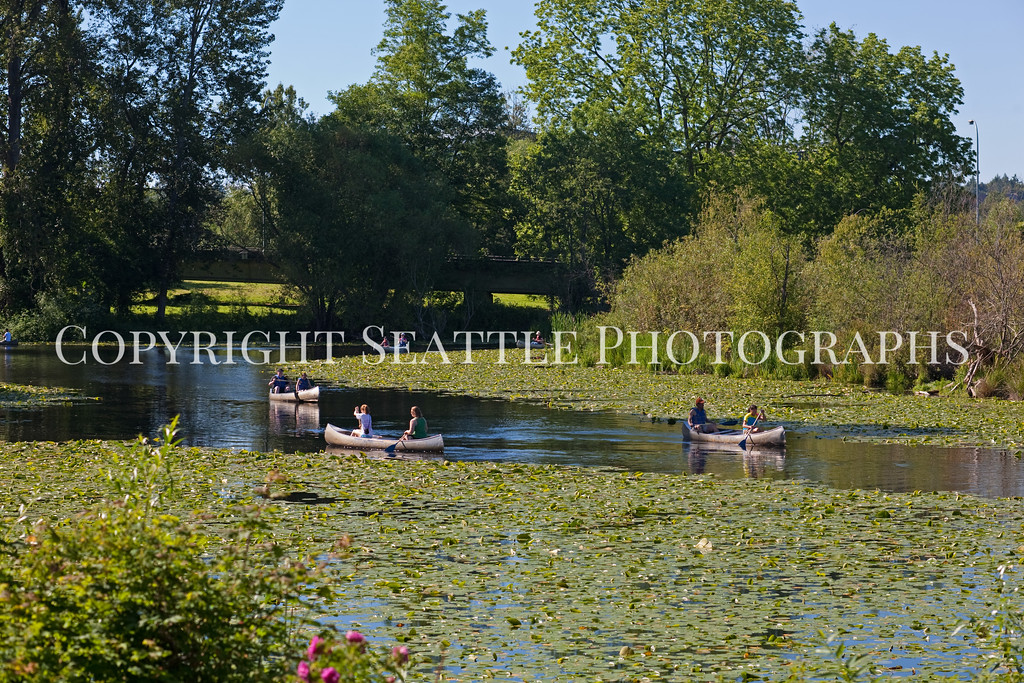 Arboretum Lake 102