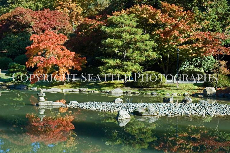 Japanese Garden Lake 7