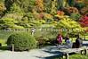 Japanese Garden Path 6