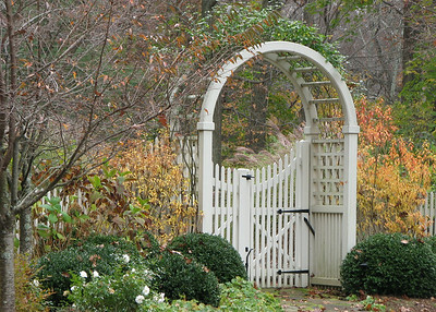 177 - Greenwich CT - Custom Arbor
