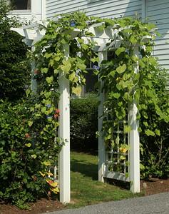 190 - Bedford NY - Garden Arbor