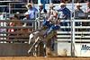 20161015_Arcadia Rodeo-198
