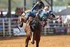 20160313_Arcadia Rodeo-32