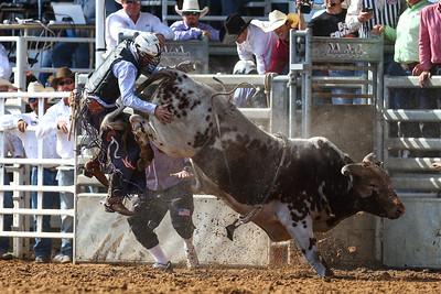20160313_Arcadia Rodeo-340